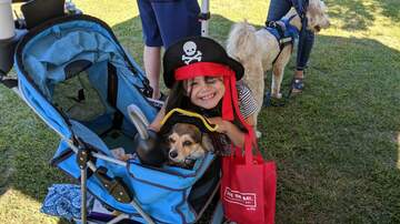 Photos - B101 @ PARL Pet Walk 9.21.19