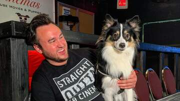 Klinger - Pet-Friendly Theater Lets You Bring Your Dog And Serves Wine And Whiskey