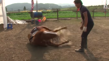 JB - ***VIDEO*** Horse Plays Dead Every Time Someone Tries To Ride Him