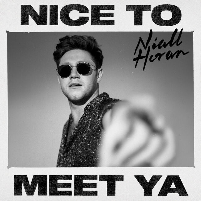 "Niall Horan - ""Nice To Meet Ya"""