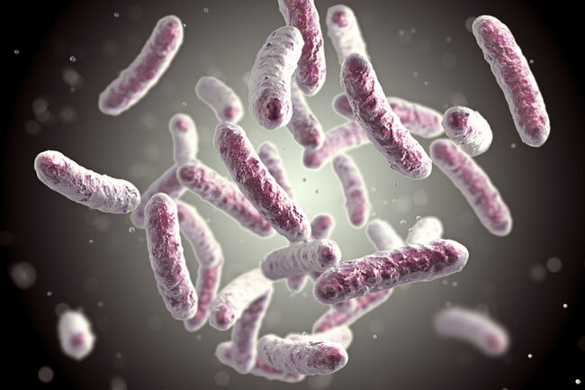 The Number of Superbugs is Growing, and the Threat with It