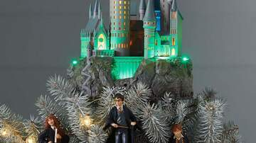 Lauren - Just Found My New Harry Potter Tree Topper!