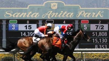KNN Headlines - Horse Racing Organizations Create Thoroughbred Safety Coalition