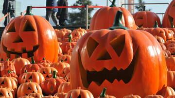 Rick Lovett - Kid Friendly Halloween Events 2019