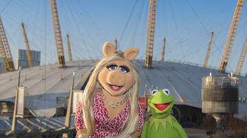 Fay - Watching Your Wedding Video & Finding The Muppets Are There... Sort Of!