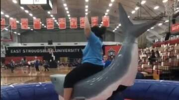 Jake Dill - Riding Shark FAIL
