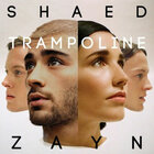 ZAYN Hops On A Remix Of SHAED's 'Trampoline'