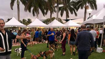Photos - Jodi Kicked Off The Weekend With Barks And Brews At DTAG