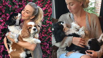 Entertainment News - Julianne Hough Mourns The Loss Of Her Dogs After They Die On Same Day