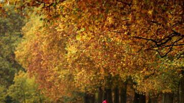 1450 WKIP News Feed - Big Week For Leaf-Peepers In The Hudson Valley