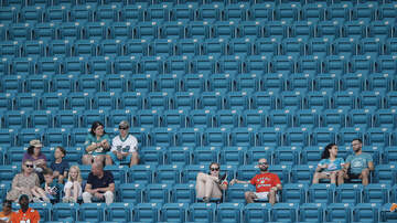 Mike 'Lubie' Lubitz - Lubie's Law: Win or Lose, What is the Right Way to Root for Phins' Fans?!