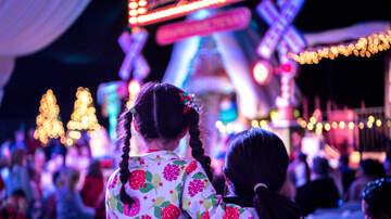 None - Moncks Corner Holiday Fairs
