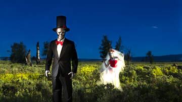 Matt Provo - Best Homemade Halloween Display You'll Ever See