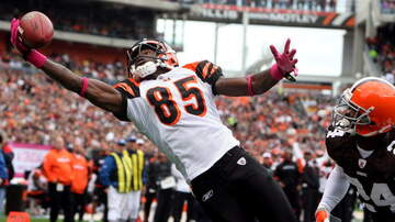 Lance McAlister - Watch: Chad Johnson makes NFL's 100 Greatest Characters list