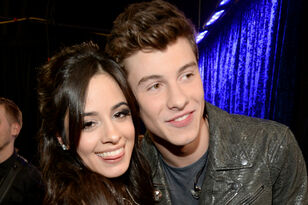 Camila Cabello Mocks Shawn Mendes Breakup Rumors With Hilarious Insta Post