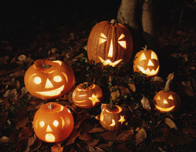 Pumpkin lanterns on ground, night
