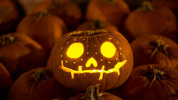 Kari Steele - How To Keep Your Jack-O-Lantern Fresher For A Longer Period Of Time!