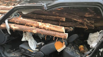 National News - Driver Miraculously Survives After Logs Crash Through Windshield