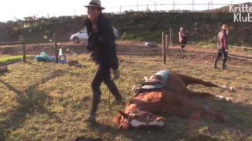 Rachel Lutzker - Horse Plays Dead Whenever Someone Tries To Ride Him
