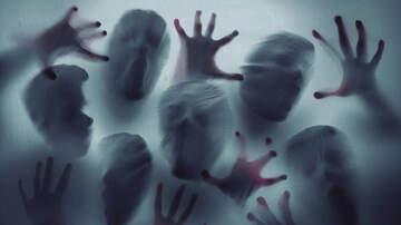 Amanda Flores - Take a ghost tour this Halloween week!