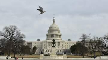 Political Junkie - Senate Unanimously Passes Animal Cruelty Bill