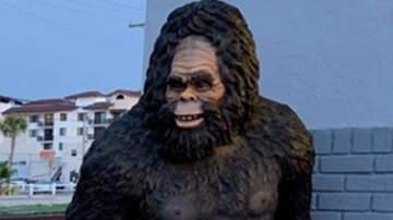Weird News - Florida Police Looking For Stolen Bigfoot Statue