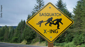 Coast to Coast AM with George Noory - Driver Spots Sasquatch Crossing the Road in North Carolina?