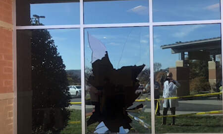 Weird News - Buck Crashes Through Hospital Window And Gets Hit By A Car Trying To Escape