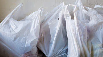 BJ The Web Guy - No More Plastic Bags In Albany County, Paper Bags To Cost A Nickel