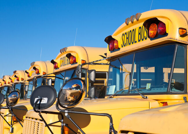 Row of yellow school busses