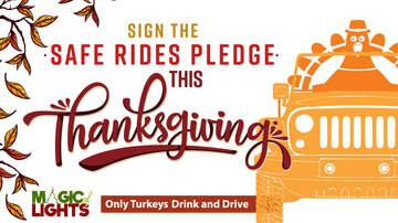 Contest Rules - Sign the Safe Rides Pledge to win tickets to Magic of Lights rules