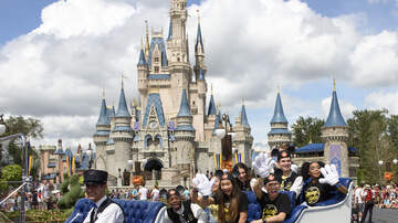 Brooke Morrison - Here's Why Walt Disney World Won't Be Getting A 5th Park Any Time Soon