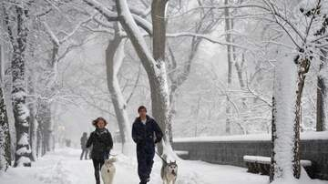 image for Brace Yourselves Chicagoans, Snow Is Expected This Week