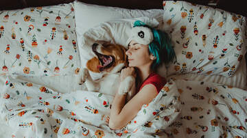 Kyle Anthony - Study Says Women Sleep Better Next to Dogs