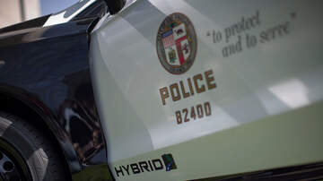 Dave Styles - LAPD Is Testing A Device That Uses Tethers That Wrap Suspects' Bodies