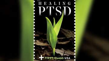 Glenn Hamilton & Amy Warner - New U.S. Postal Service stamp will raise money to help veterans with PTSD