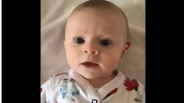 The Fox Den with Dangerous Dave - Baby Hears For First Time