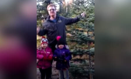 National News - 4-Year-Old Twins Survive Car Crash, Climb 200-Foot Embankment Seeking Help