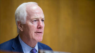 Local News - Texas Democrats Fail to Field a Big Name Challenger to Cornyn