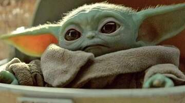 Suzette - Confirmed: Baby Yoda Will Get An Origin Story On 'The Mandalorian'