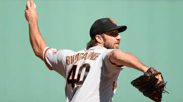 Sports News - Dodgers Shift Their Focus To Madison Bumgarner After Cole Signing