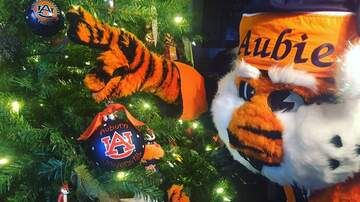 Christmas in Your Hometown - Letters to Santa with Aubie