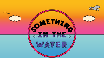 image for 2020 Something In The Water