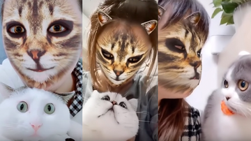Trending - Pets Hilariously Freak Out When They See Their Owners With Cat Filters