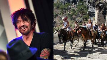 iHeartRadio Music News - Greece Vows To Protect Santorini Donkeys Following Tommy Lee's Letter