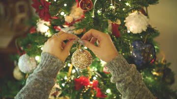 Bruce, John and Janine - Some Unique Holiday Tree Decorating Ideas
