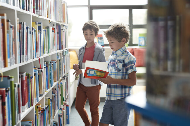 Two brothers standing in school library