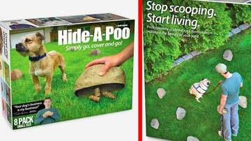 Klinger - Dog Owner? Hide-A-Poo Let's You Hide Dog Poop Rather Than Picking It Up