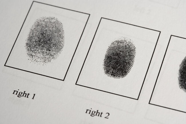 Detail of a fingerprint document