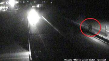 Coast to Coast AM with George Noory - Bigfoot Spotted on Highway Traffic Cam?
